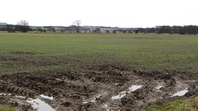 Arable land, Park Hills
