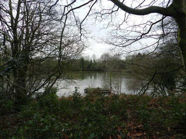 Pond at Bradley