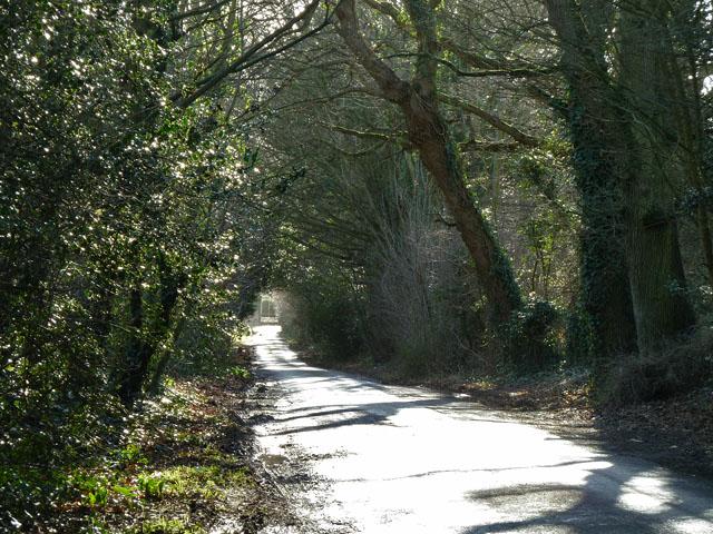 Denmans Lane