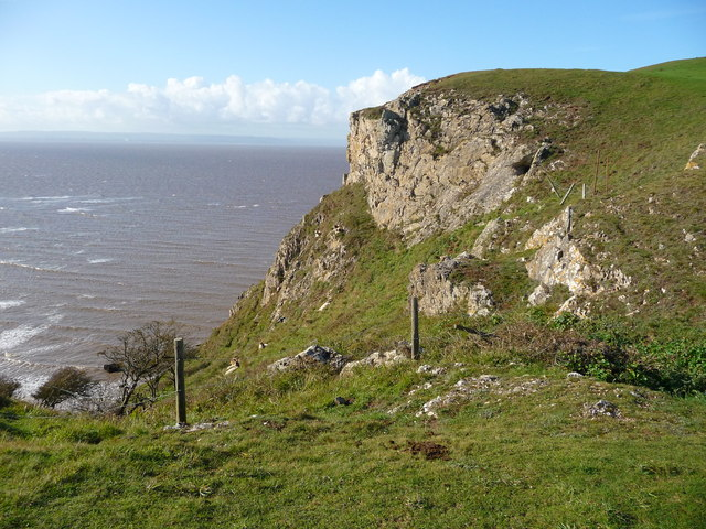 Brean Down - Outcrop