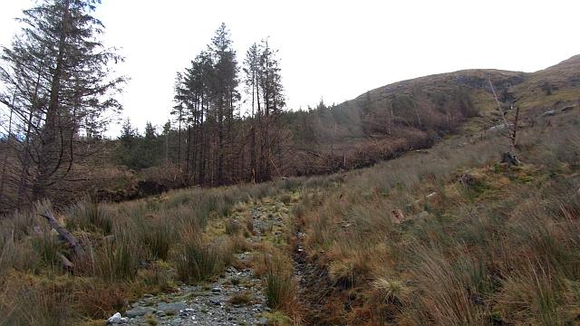 Path, Leacann