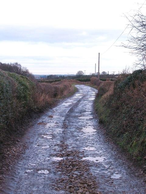 High Lane, Spofforth Park