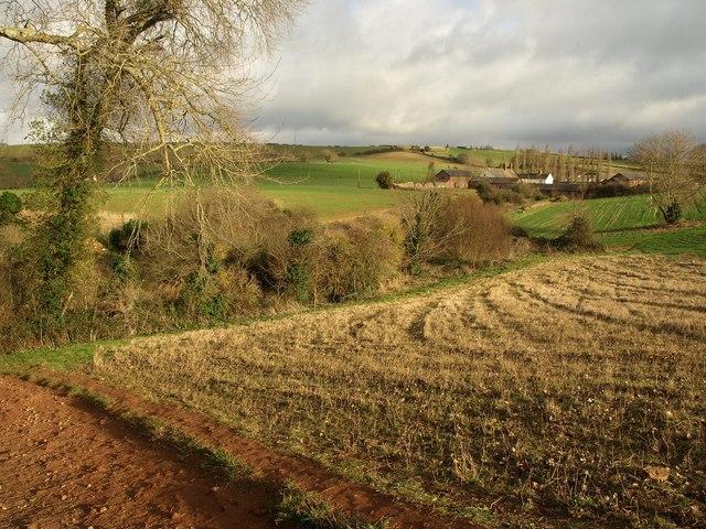 Field boundary near South Farm