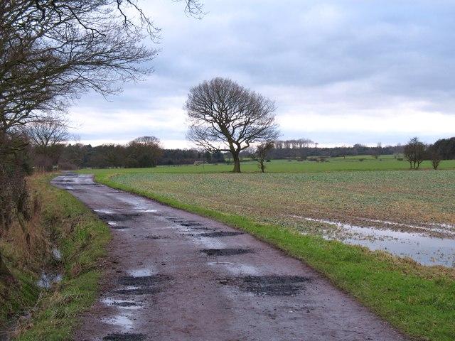 Footpath to Sunrise Farm