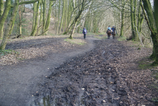 Horse-riding on the Irwell Sculpture Trail