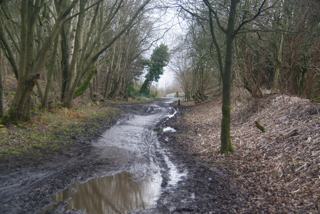 The Irwell Sculpture Trail