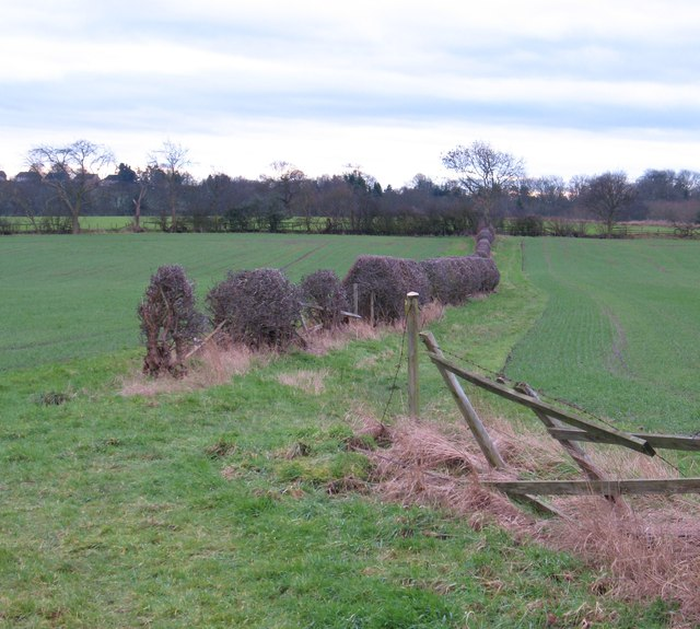 Path to Kirkby Overblow