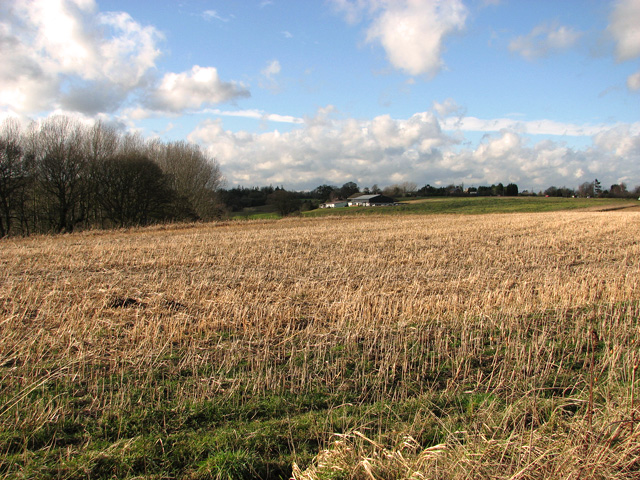 Stubble field south of Thorpe's Hill, Hintlesham
