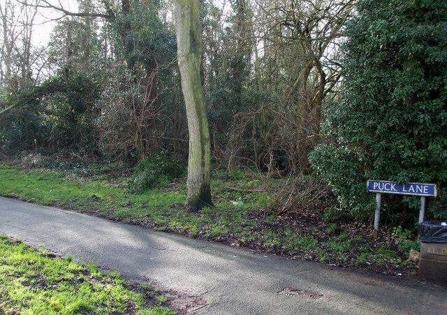 Puck Lane