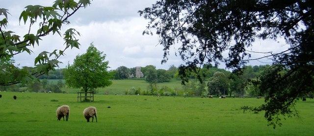 Wimpole Park, Cambridgeshire