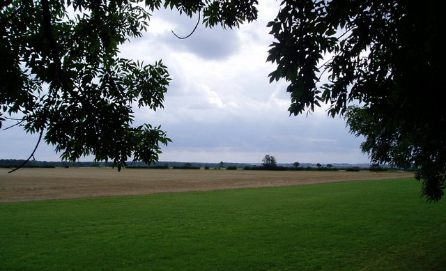 View from Charcoals Wood, Cambridgeshire