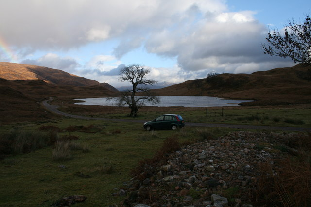 Lochan Doire a' Bhràghaid and the tree