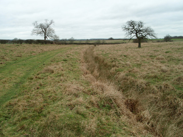 Grazing land and bridleway near Turvey