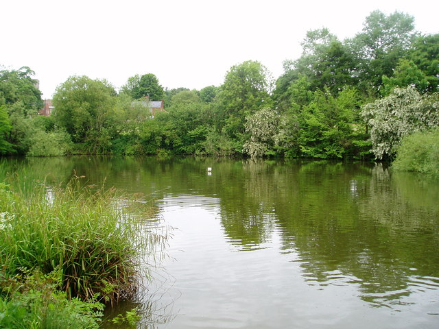 Bailey Pond, Lidgate, Suffolk
