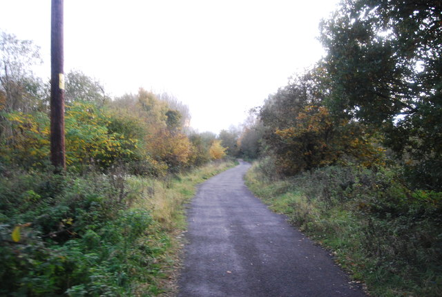 Blackwater Valley Path, Hollybush Park