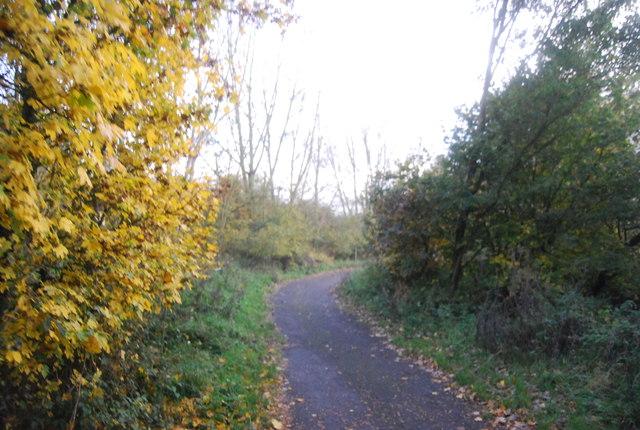 Blackwater Valley Path in Hollybush Park