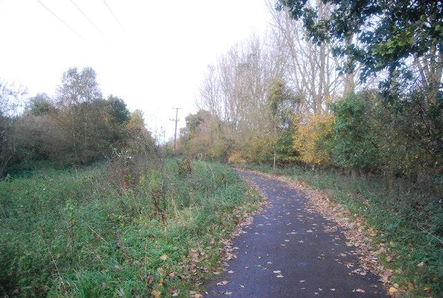 Blackwater Valley Path heading north in Hollybush Park