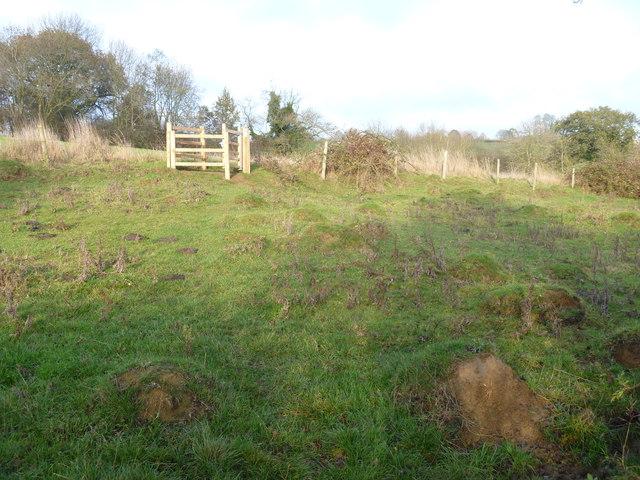 Lumpy bumpy field