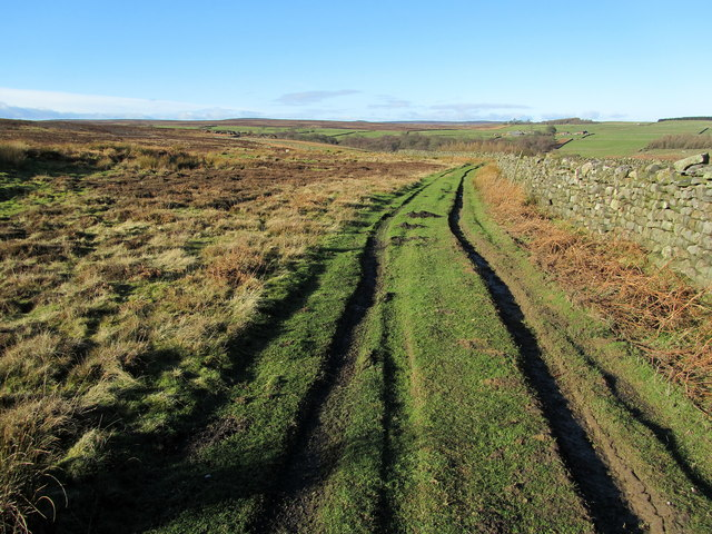 Track on the Edge of Eavestone Moor