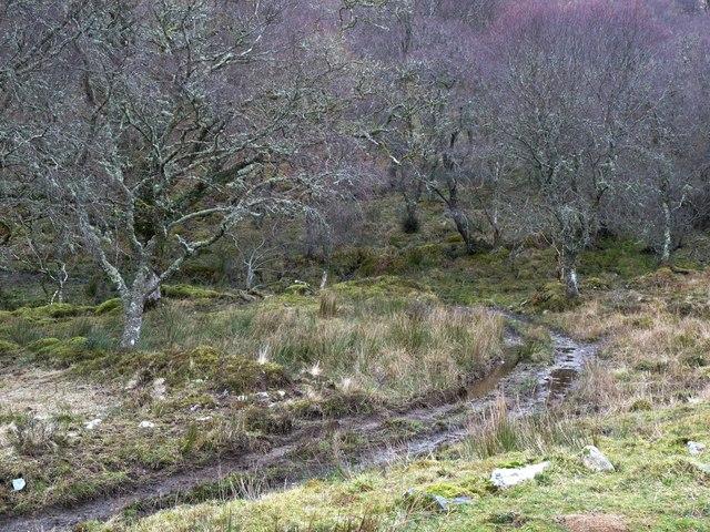 Track at Glaceriska