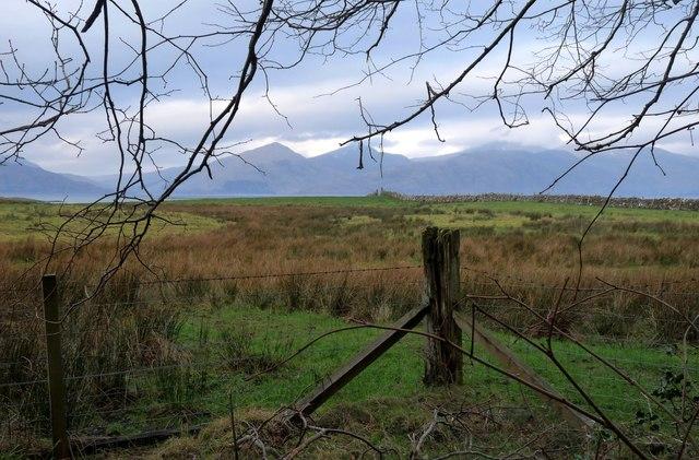 Pasture at Ardtur, Appin
