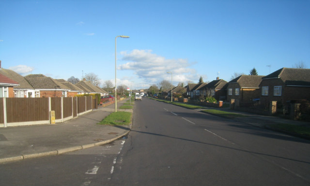 Bungalows in Buckland Avenue