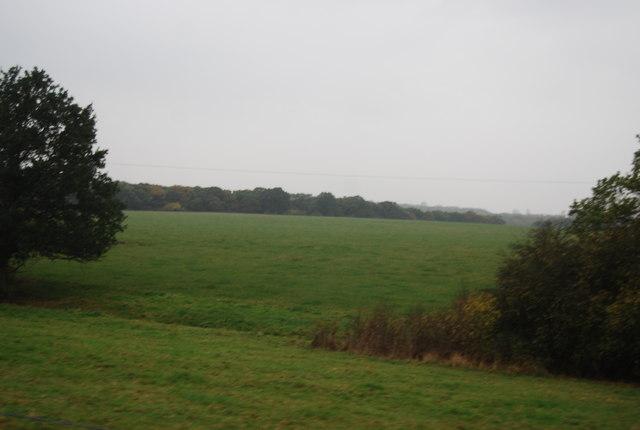 Fields near Warren Farm