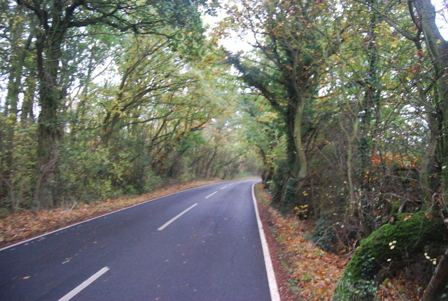 Thornden Wood Rd