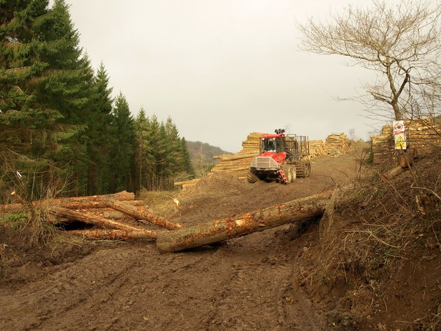 Timber and tractor, Bovey Down