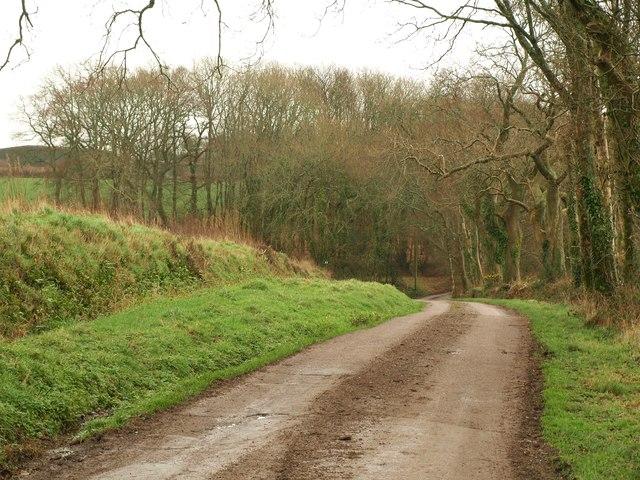 Lane near Sailing Light Farm
