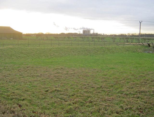 Farmland at Grange Farm