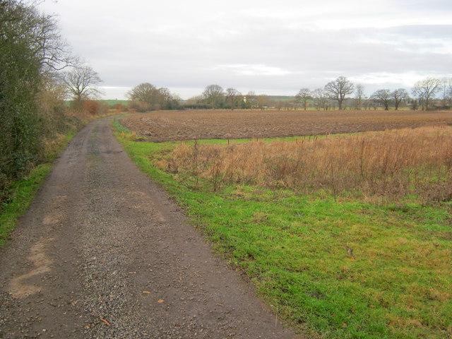 Farm track near Moor House