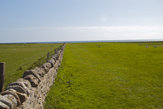 Boundary Stone Field Wall on Bible Law Holy Island