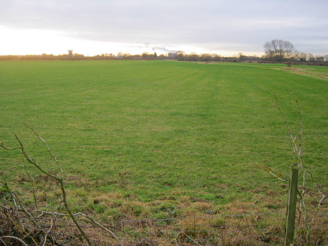 Meadow near South Muskham