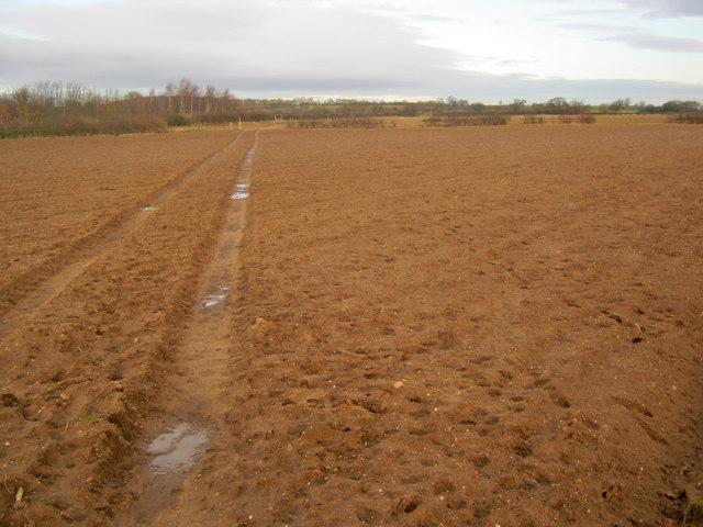 Footpath near Grange Farm