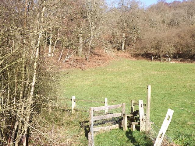Stile by Lapscombe Farm