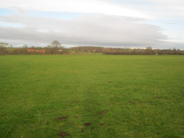 Meadows at Grange Farm