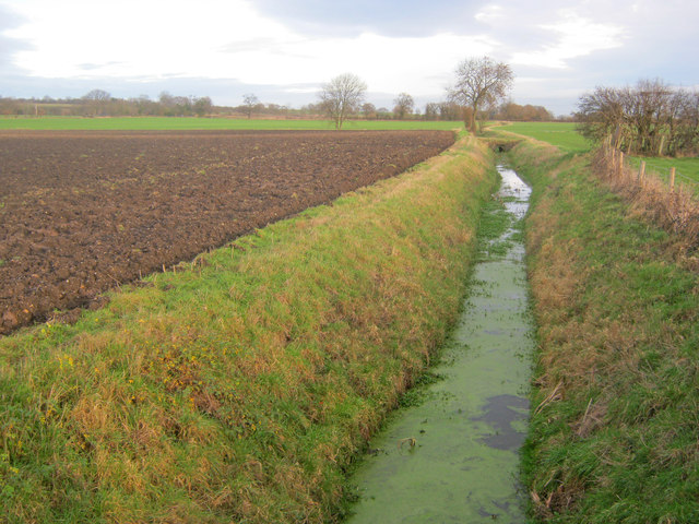 Drainage ditch at Manor Farm