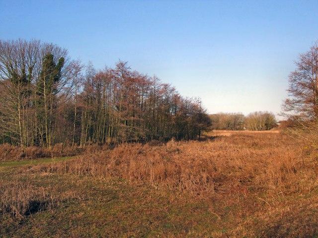 Lewes Railway Land LNR