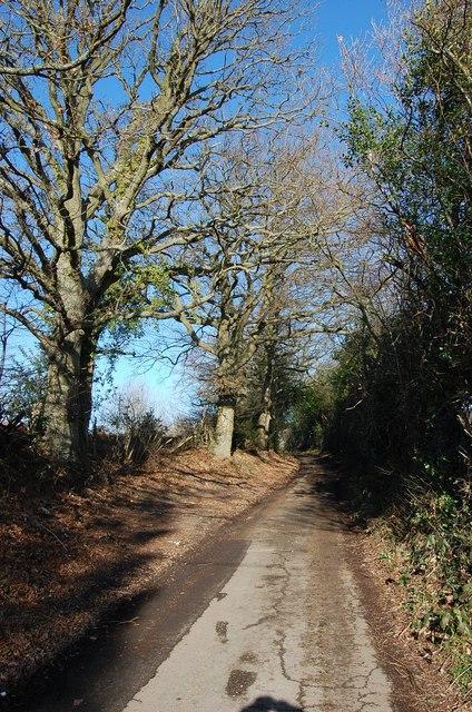 Millpond Lane, off Cranbrook Road