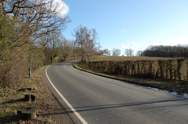 Tenterden Road near Short's Farm