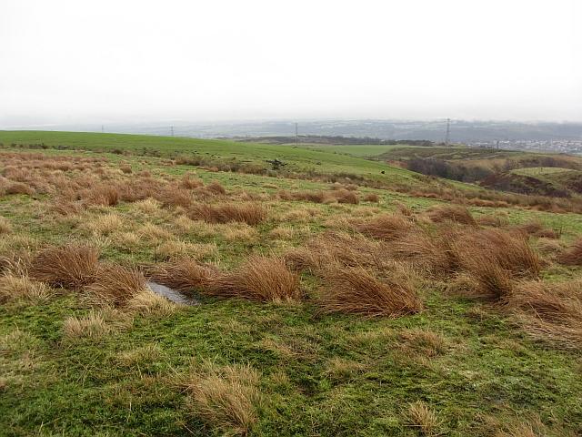 Rough grazing above Drumtrocher