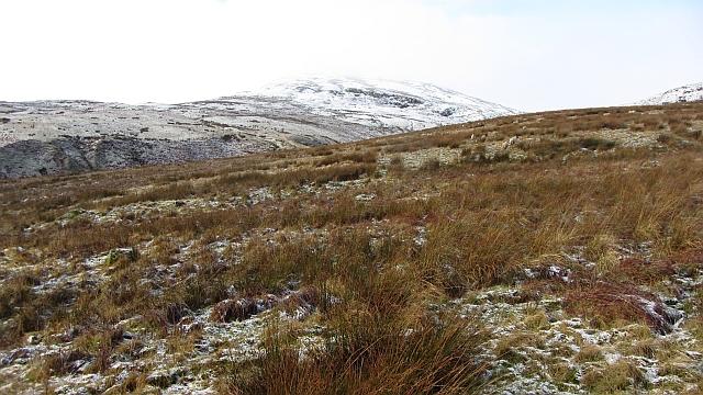 Rough grazing on Garrel Hill
