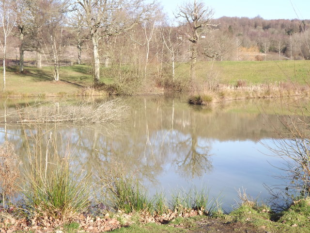 Lake by South Copse