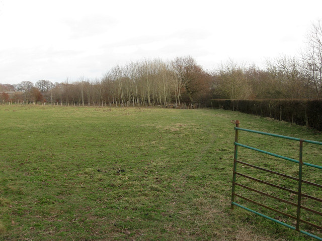 Coopers Meadow
