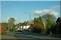 TQ4566 : Houses on Crofton Lane by Robin Webster