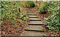 J4078 : Steps, Glenlyon, Holywood (4) by Albert Bridge