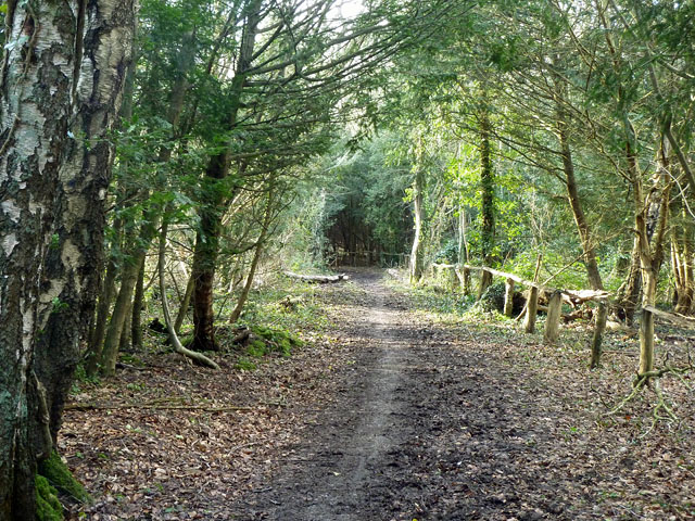 Bridle path on Hayes Common