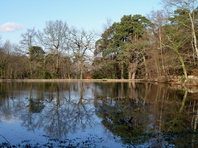 Top fishpond, Keston Common