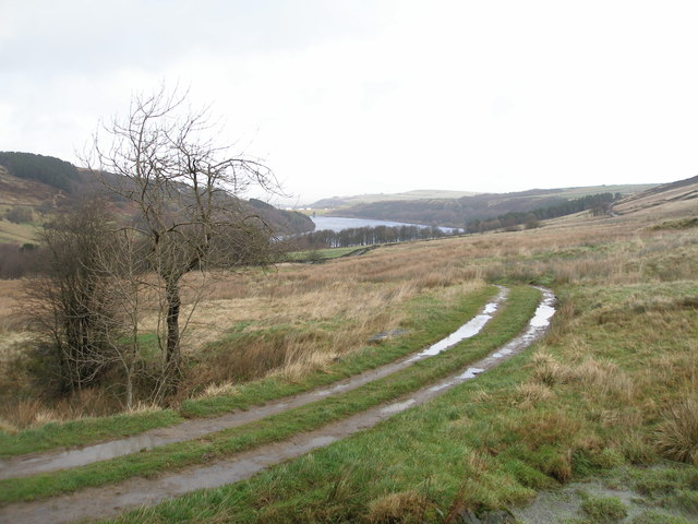 Track towards Scammonden from Deanhead